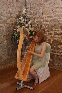 Harpist+