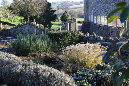 Herb Garden Dec 2014